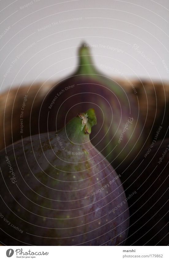 figs Colour photo Food Fruit Nutrition Nature Delicious Dark green Violet Blur Fig Fig tree Decoration Fresh Plant