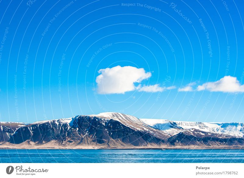 Mountain in the icelandic ocean Beautiful Vacation & Travel Tourism Summer Ocean Island Snow Nature Landscape Sky Clouds Climate Weather Rock Coast Fjord