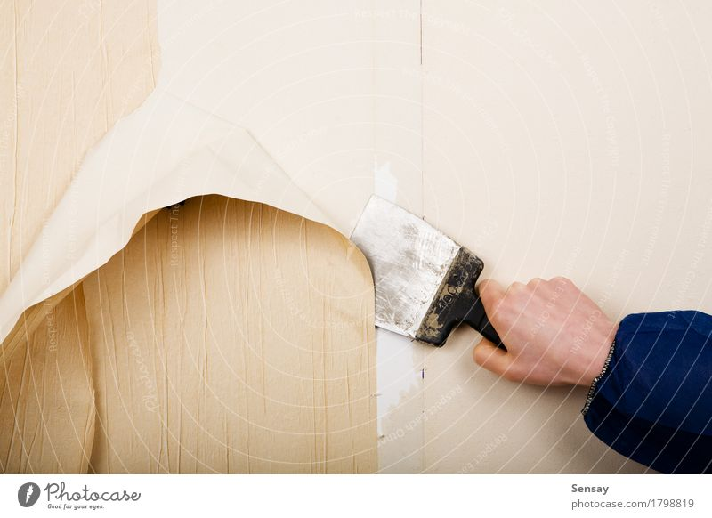 removal of old wallpapers with spatula Decoration Wallpaper Work and employment Craftsperson Tool Hand Paper Old Home off renovation painter interior Repair