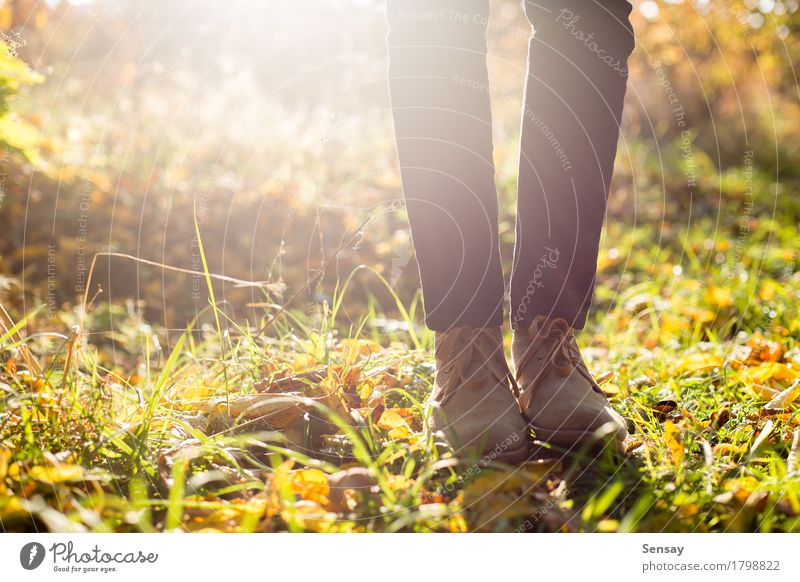 Legs in stylish boots on autumn background Beautiful Summer Sun Human being Girl Woman Adults Man Feet Nature Autumn Leaf Park Forest Jeans Footwear Boots