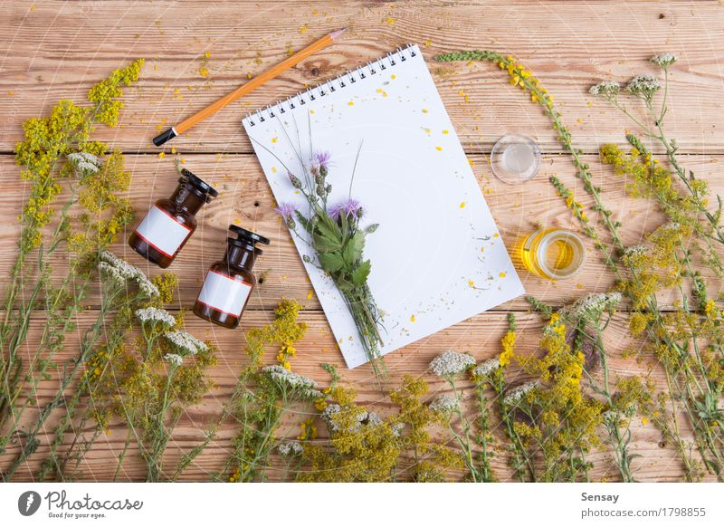 fragrant oil in the bottles, herbs and blank notepad Nature Old Plant Green Beautiful Flower Leaf Yellow Wood Health care Copy Space Fresh Table Paper