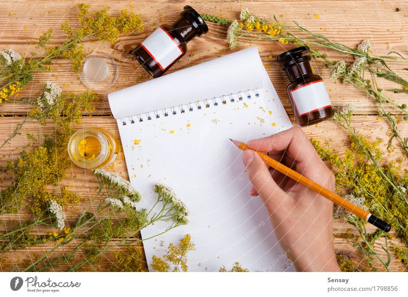 hand write a recipe in notepad on wooden table, herbs around Nature Old Plant Green Beautiful Flower Hand Leaf Yellow Wood Health care Copy Space Fresh Table