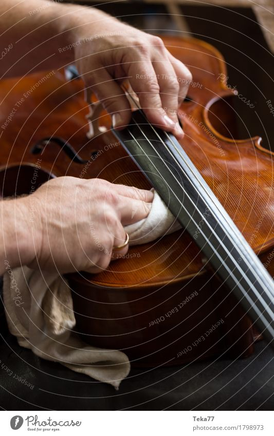 Violin making IIIIIII Style Music Profession Craftsperson violin maker Workplace Human being Hand Esthetic Musical instrument violin making Close-up Detail
