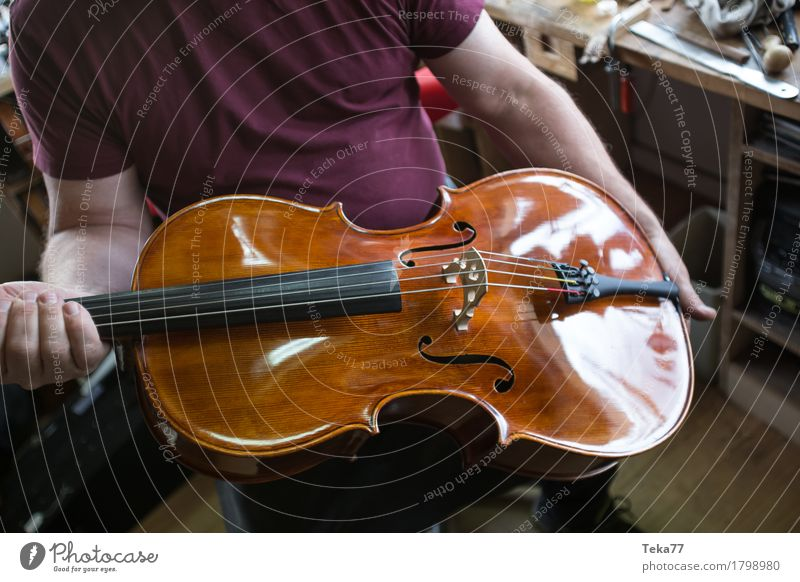 Violin making IIIIII Style Music Education Work and employment Profession Craftsperson Human being Hand Art Artist Esthetic violin making violin maker