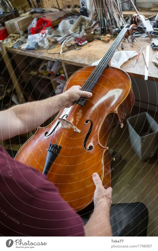 Violin making IIIII Style Music Education Work and employment Profession Craftsperson Human being Hand Art Artist Esthetic violin making violin maker