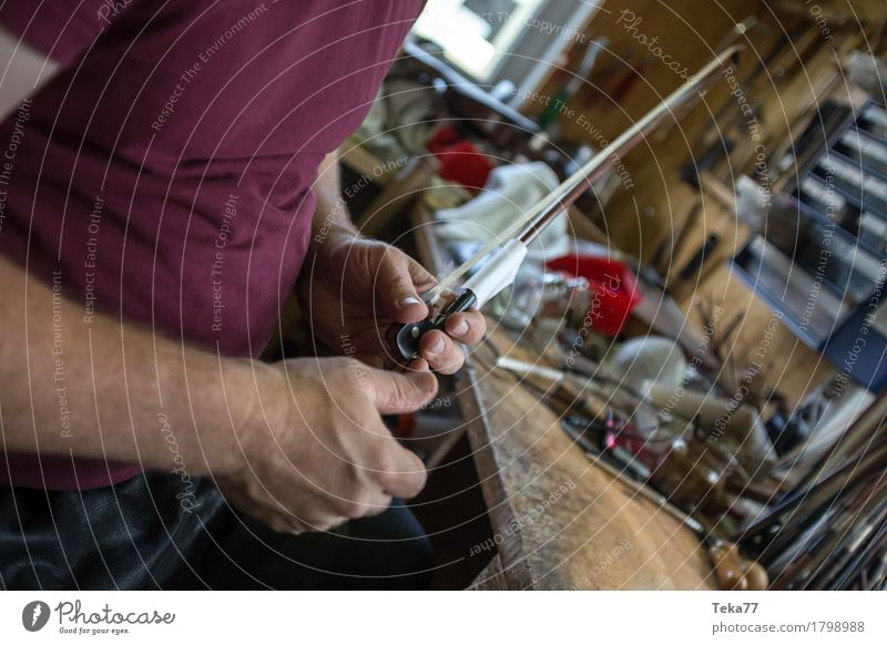 Violin making IIIIIII Style Music Profession Craftsperson violin maker Workplace Human being Hand Esthetic Musical instrument Colour photo Close-up Detail