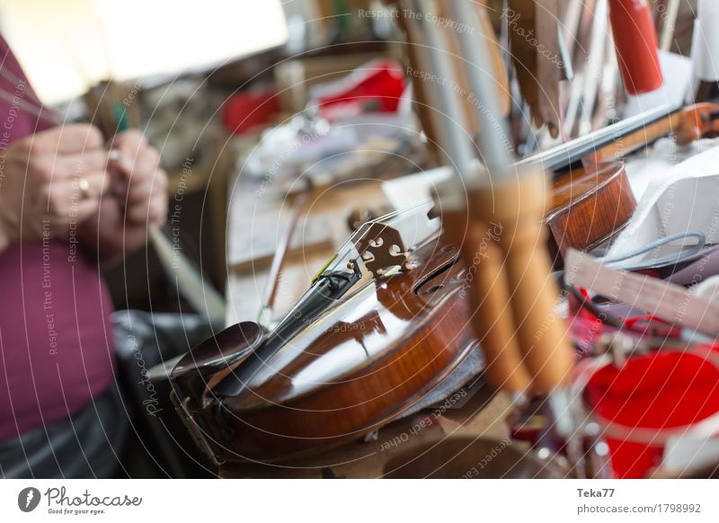 Violin making III Style Music Work and employment Profession Craftsperson Human being Hand Art Artist Esthetic violin making violin maker Colour photo