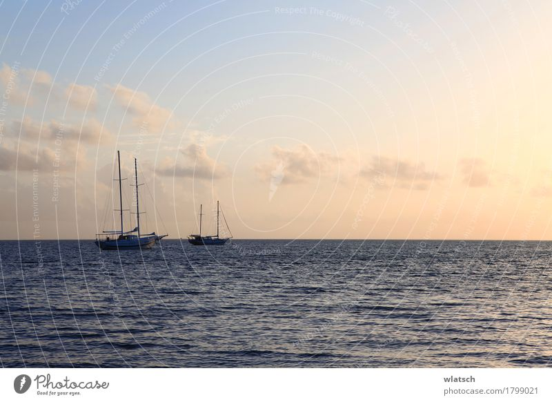 Boats in sun flush Water Clouds Sunrise Sunset Summer Beautiful weather Coast Bay Ocean Island Navigation Boating trip Sailboat Wood Swimming & Bathing Discover