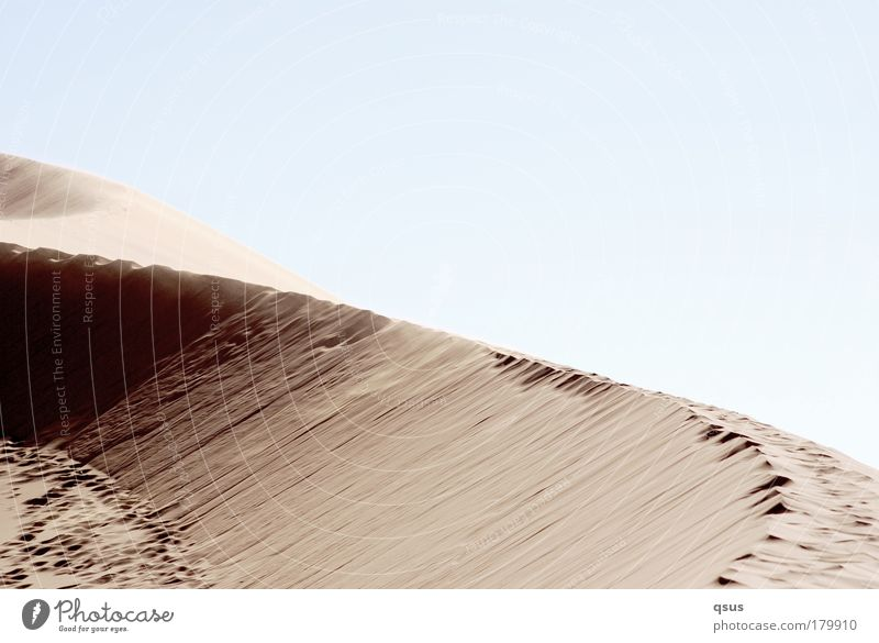 Calm Loneliness Warmth Sand Wind Desert Dune Footprint Tracks Curve Doomed Drought Overexposure Blown away Creep Dark side