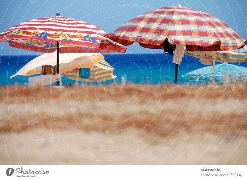 with colourful umbrellas Colour photo Exterior shot Deserted Light Deep depth of field Central perspective Sand Water Sky Cloudless sky Summer Beach Ocean