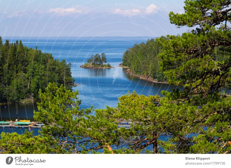 Ladoga Lake. Nature Landscape Plant Water Sky Clouds Horizon Summer Weather Beautiful weather Tree Jawbone Forest Lake Ladoga Serene Calm Relaxation