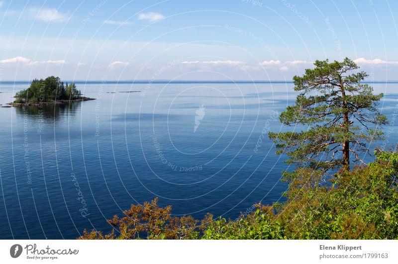 "Ladoga Lake. Environment Nature Landscape Plant Water Sky Clouds Horizon Summer Weather Beautiful weather Tree Jawbone Island Lake Ladoga ""Valaam Karelia"""