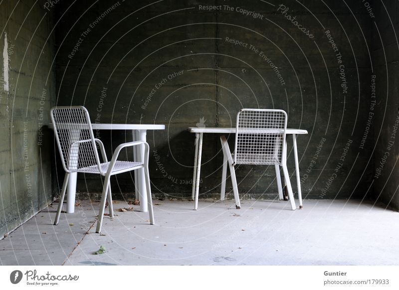 White Green Leaf Black Dark Wall (building) Garden Gray Sadness Moody Dirty Concrete Table Chair End Rust