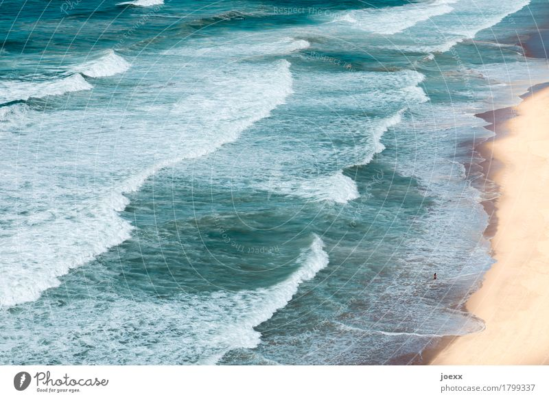 Human being Vacation & Travel Blue Summer White Ocean Landscape Beach Brown Waves Beautiful weather Summer vacation