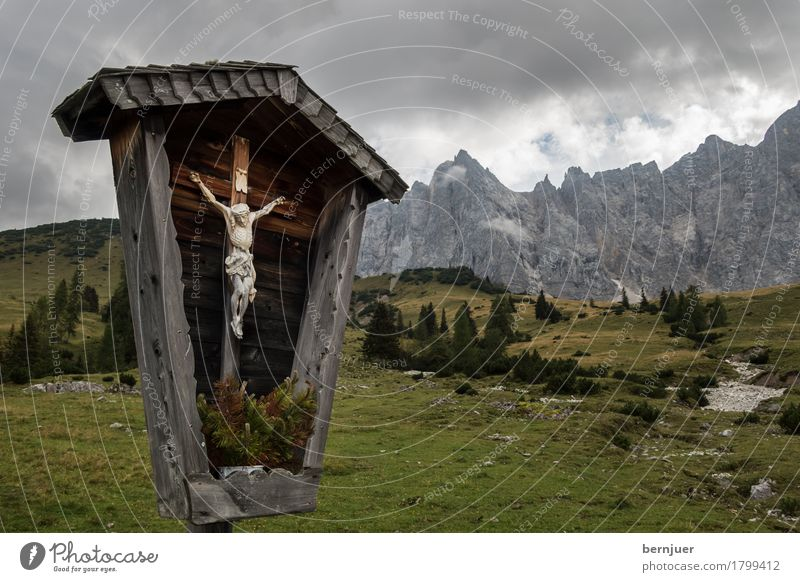 crucifix Nature Landscape Clouds Weather Bad weather Tree Grass Alps Mountain Peak Wood Sign Old Brown Green Belief Religion and faith Calm Christian cross