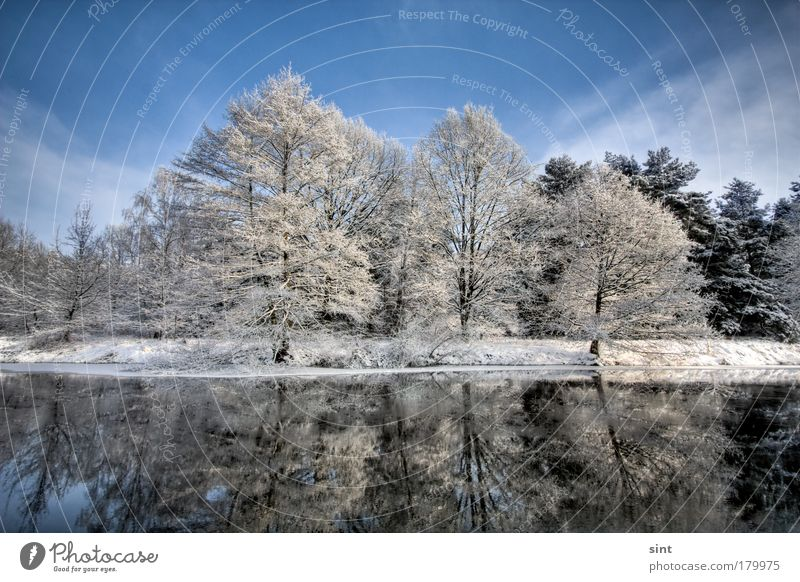 snow at the lake Colour photo Exterior shot Deserted Copy Space top Day Sunlight Deep depth of field Wide angle Winter Snow Winter vacation Nature Landscape