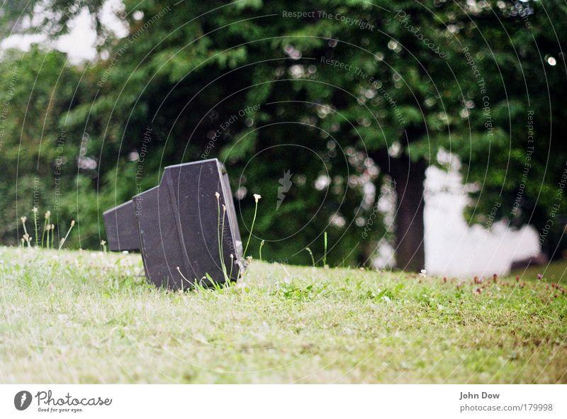 Tree Meadow Grass Garden TV set Television Exceptional Environmental protection Environmental pollution Absurd Trash Deface Bulk rubbish