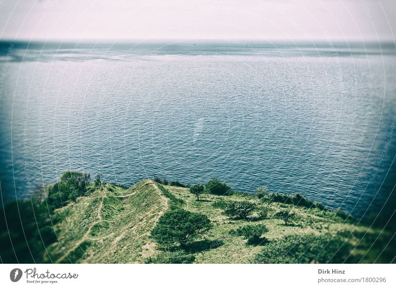 Bornholm / View of the Baltic Sea from Hammershus Vacation & Travel Tourism Trip Far-off places Freedom Summer Summer vacation Ocean Island Environment Nature