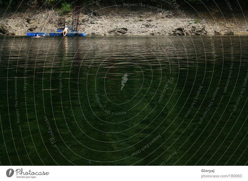 Water Green Summer Joy Calm Black Adults Dark Gray Jump Wet Swimming & Bathing Threat Simple 18 - 30 years Trust