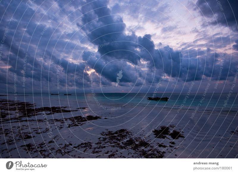 Nature Water Sky Ocean Blue Beach Clouds Watercraft Wind Weather Wet Horizon Dangerous Threat Dynamics Algae