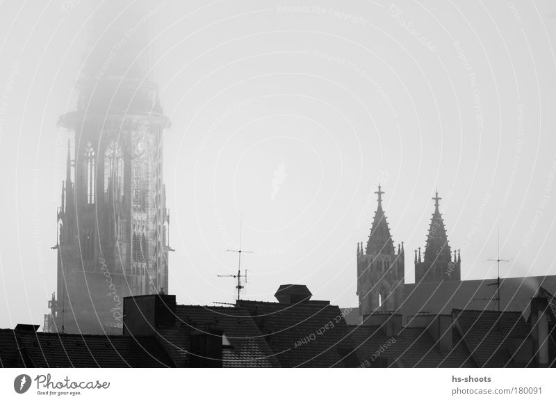 munster of freiburg Black & white photo Evening Twilight Night Long shot Downward Bad weather Fog Freiburg im Breisgau Germany Town Church Dome Tower
