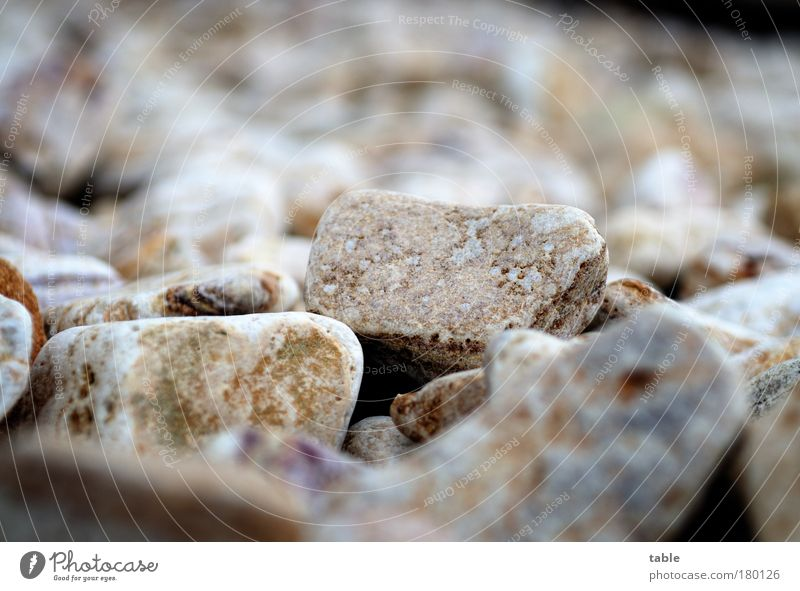 hard times . . . Colour photo Subdued colour Deserted Copy Space top Worm's-eye view Environment Stone Utilize Scream Throw Sharp-edged Firm Together Cold Under
