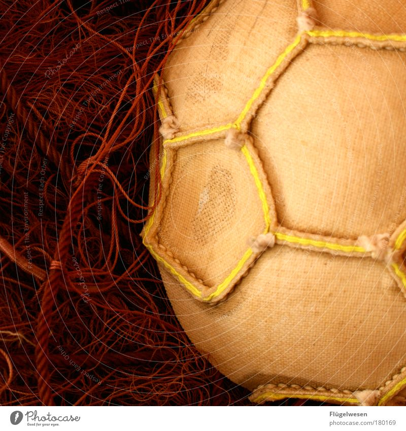 We're back in East Soccer! Colour photo Interior shot Lifestyle Leisure and hobbies Sports Ball Net Close-up Detail Stitching stitched Foot ball Yellow Surface