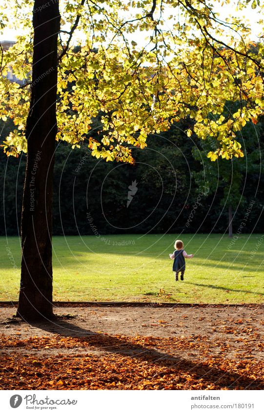Human being Child Sky Nature Green Tree Girl Joy Leaf Yellow Meadow Autumn Playing Grass Happy Park