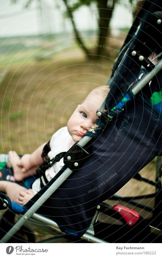 skepticism Baby 0 - 12 months Sit Brash Small Contentment Boredom Baby carriage Childlike Colour photo Exterior shot Day Shallow depth of field