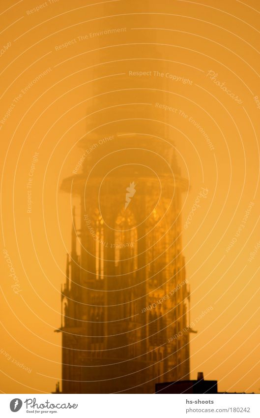 Freiburg cathedral in winter with fog Colour photo Evening Twilight Night Freiburg im Breisgau Germany Church Tower Manmade structures Building Architecture