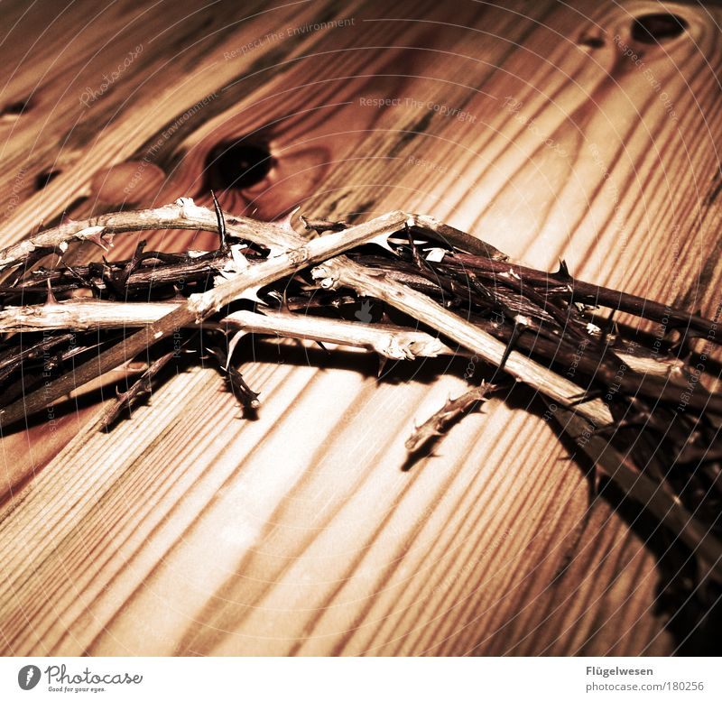 Death Wood Sadness House of worship Church Israel Grief Religion and faith Passion Brave Christian cross Toys Crucifix Safety (feeling of) Thorny Sustainability
