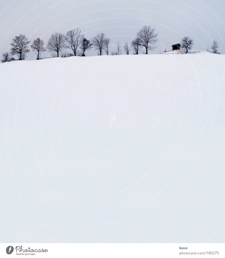 Nature White Tree Blue Winter Black Snow Mountain Gray Landscape Esthetic Hill House (Residential Structure) Hut