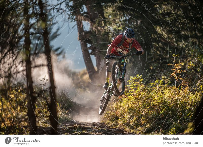 overfly the roots Style Athletic Fitness Leisure and hobbies Tourism Adventure Freedom Mountain Sports Sportsperson Cycling Bicycle Nature Landscape Earth
