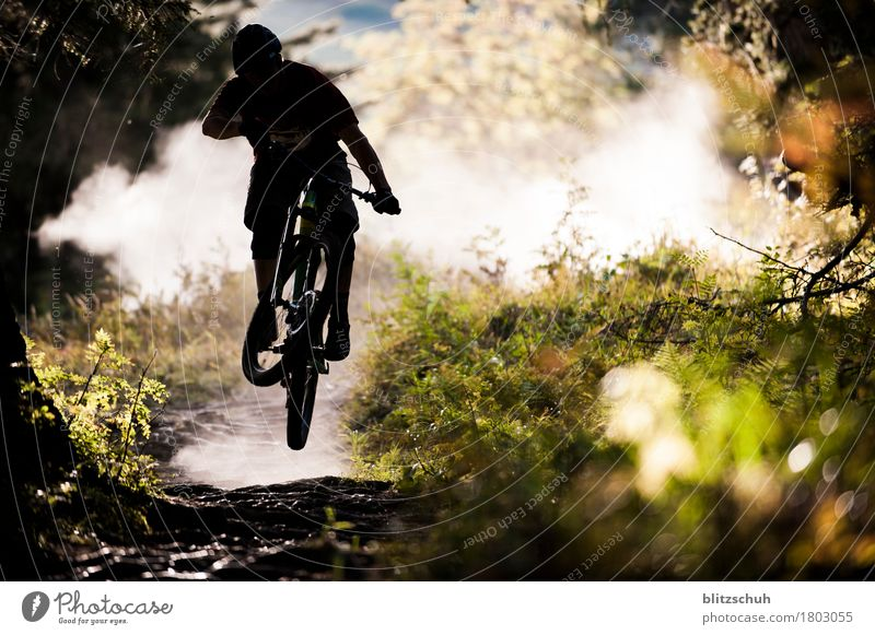 overlfly the roots second part Lifestyle Style Leisure and hobbies Vacation & Travel Tourism Freedom Mountain Sports Sportsperson Cycling Bicycle Mountain bike