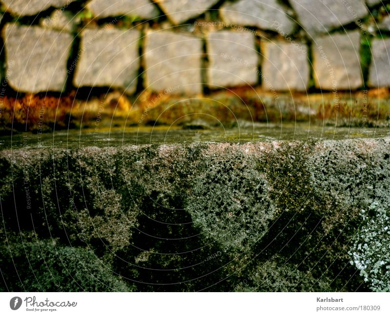 Street Cold Gray Lanes & trails Stone Work and employment Stairs Future Construction site Corner Profession Sidewalk Event Chaos Moss Distress