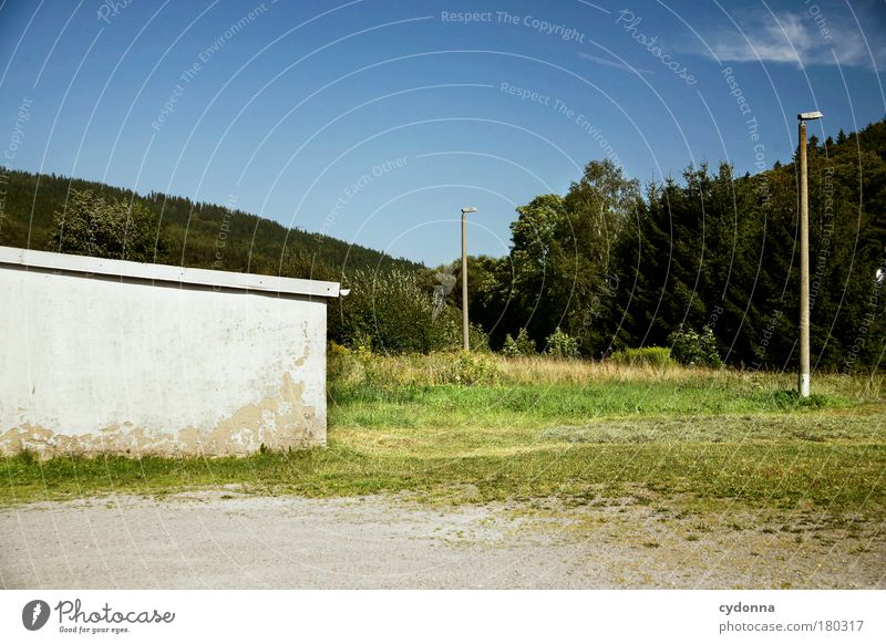 Nature Calm Loneliness Forest Life Meadow Wall (building) Death Sadness Wall (barrier) Landscape Environment Time Perspective Future Gloomy