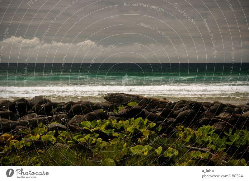 1000 miles away Colour photo Exterior shot Day Light Sunlight Beach Ocean Waves Landscape Clouds Horizon Weather Plant Coast Stone Exceptional Fresh Gigantic