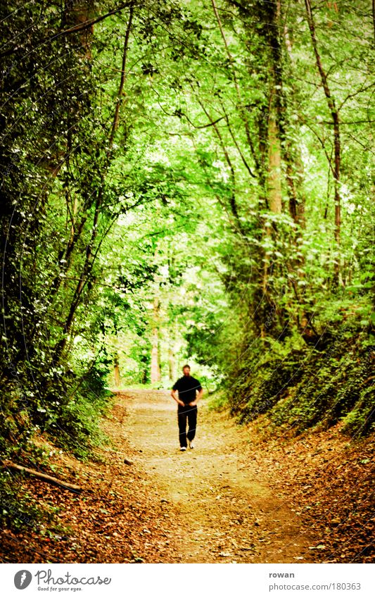 stroll Colour photo Exterior shot Day Human being Masculine Man Adults 1 Landscape Tree Bushes Forest Virgin forest Going Hiking Exceptional Threat Dark Creepy