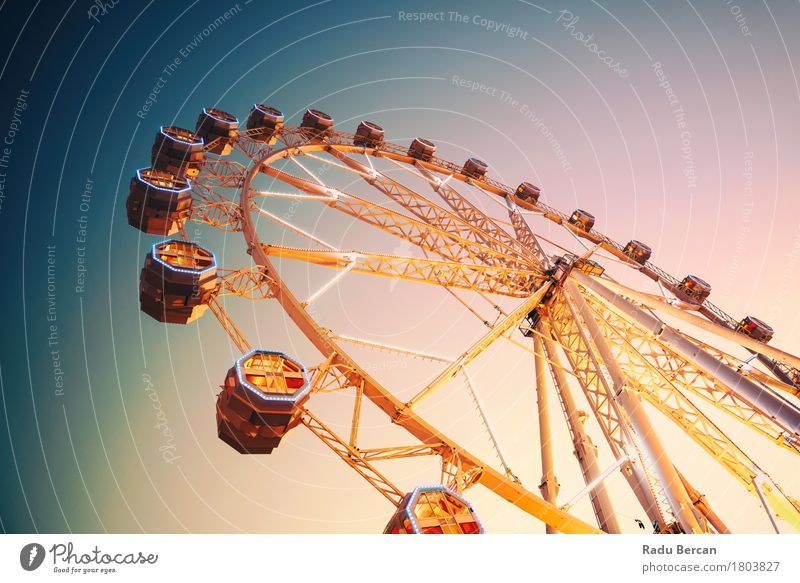 Giant Ferris Wheel In Fun Park On Night Sky Vacation & Travel City Blue Colour Summer Joy Yellow Architecture Movement Building Freedom Orange Retro To enjoy