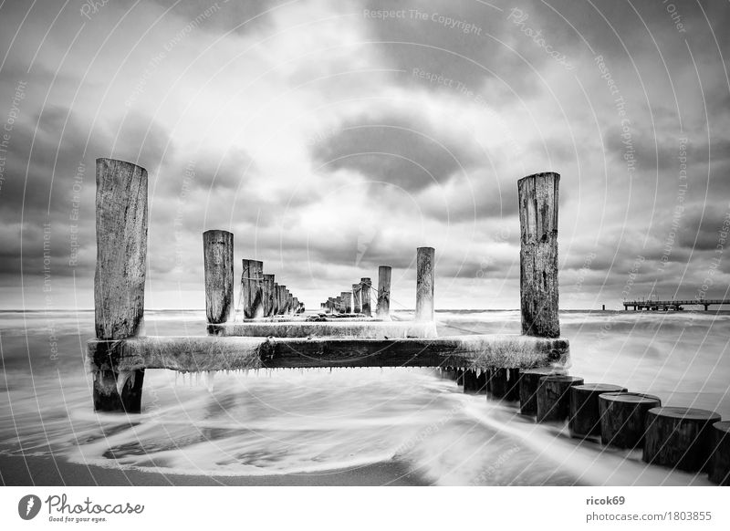 Stage at the Baltic Sea coast Vacation & Travel Tourism Beach Winter Nature Landscape Water Clouds Coast Cold Blue Black White Idyll Break water Ice Zingst