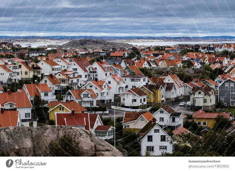 sea of houses Village Small Town Populated House (Residential Structure) Red White Life Vacation & Travel Living or residing Colour photo Exterior shot Deserted