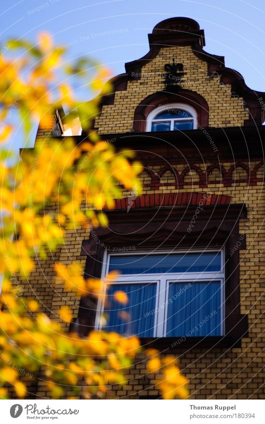 Sky Old Beautiful Tree Plant Leaf House (Residential Structure) Autumn Window Environment Building Weather Germany Facade Europe Manmade structures
