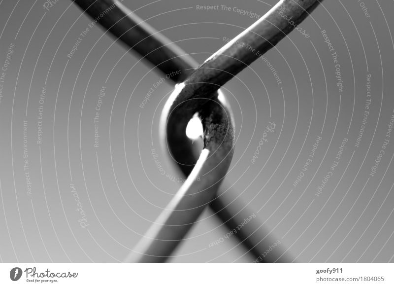 Firmly embraced Art Steel Bow Touch Rotate To hold on Embrace Esthetic Authentic Exceptional Thin Simple Elegant Together Infinity Natural Round Gray Black