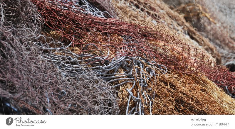 Fishing nets in the port of La Ciotat, France Colour photo Exterior shot Detail Abstract Pattern Structures and shapes Day Light Harbour Fishing village Net