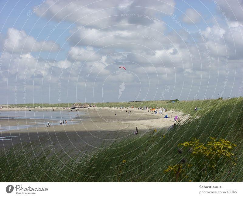 Beach at Renesse (NL) Clouds Hang gliding Grass Sand Beach dune Water Sun