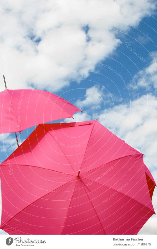 Where the pinkies go Joy Summer Sun Art Environment Sky Clouds Sunlight Climate Weather Beautiful weather Wind Warmth Blue Pink White Umbrella Sunshade Comical