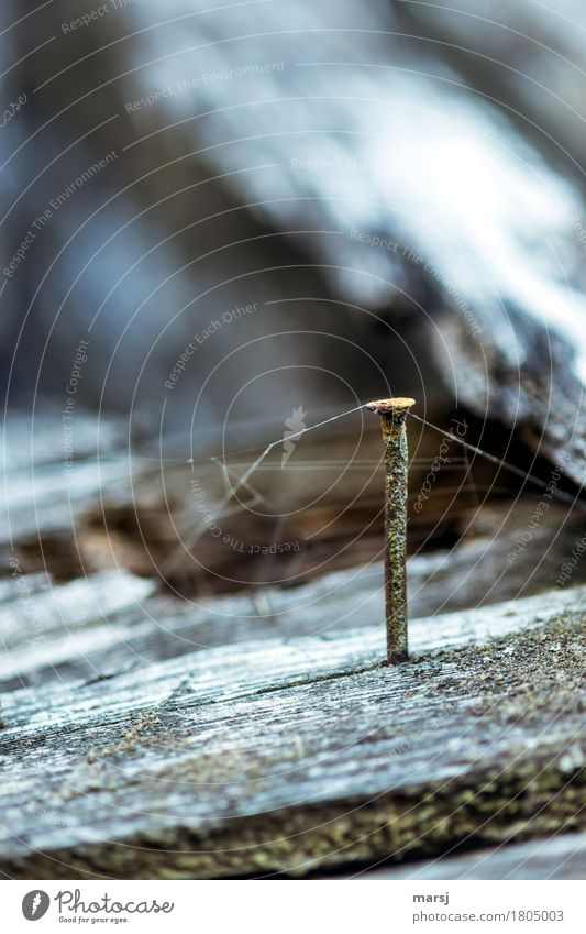 Old Dark Cold Wood Metal Esthetic Gloomy Stand Authentic Simple Creepy Rust Steel Spider's web Connect Nail