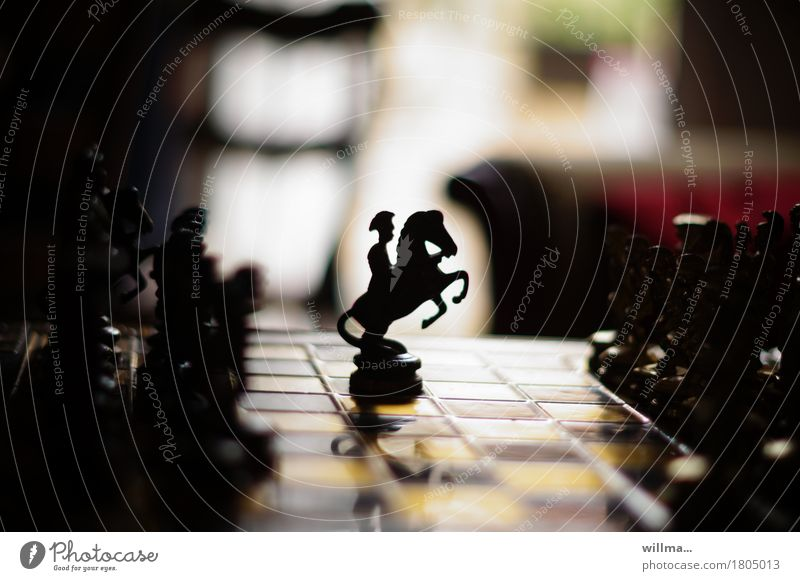 rosinante they are. | AST9 Leisure and hobbies Playing Chess Chess piece Horse Rider Chessboard Black Patient rebel Interior shot