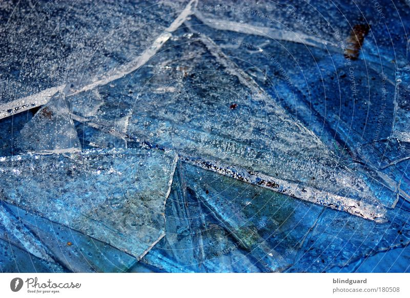 Coming Soon Colour photo Detail Deserted Day Reflection Water Winter Ice Frost Freeze Firm Cold Wet Blue White Purity Dangerous Environmental pollution