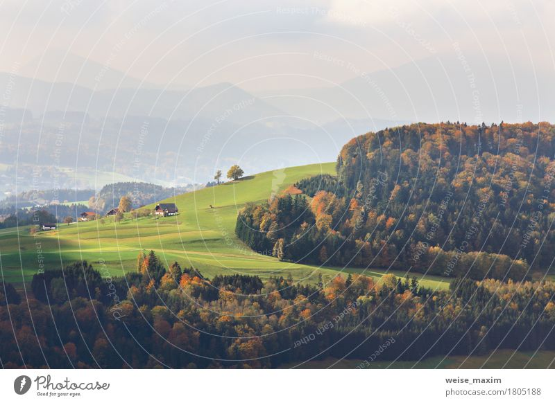 Sunny October day in Austria Nature Vacation & Travel Summer Green Tree Landscape Red House (Residential Structure) Forest Mountain Street Yellow Meadow Autumn